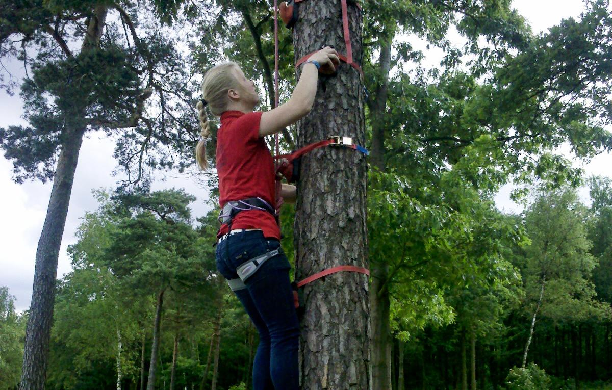 Monkey klimmen